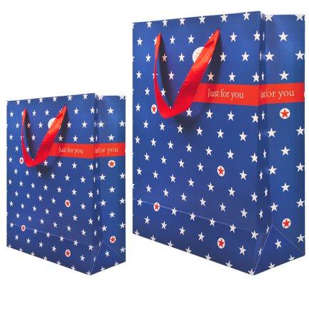 پاکت هدیه کد 3331 بسته 2 عددی