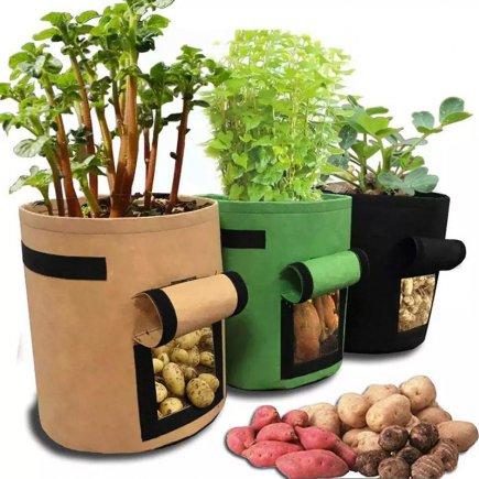 کیسه رشد گیاه کد 5054